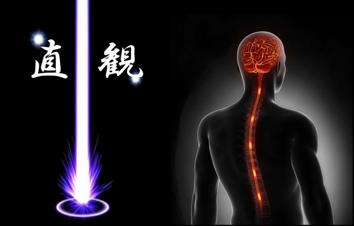 『運』の流れに乗るための信号。『直観』を科学的に解明